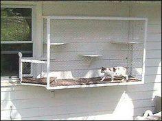 Safe cat balcony