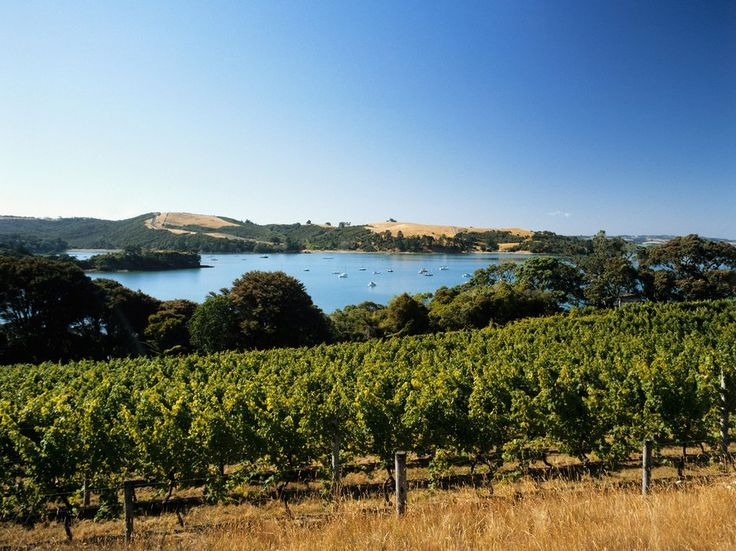 Overall Rating: 84.447A mix of Nantucket and Sonoma, with New Zealand charm, the island is a wine-lover's nirvana. Just over 30 minutes from Auckland by boat, the island hosts a manageable number of vineyards and great restaurants, perfect for a day escape from the mainland. With beaches on the north side of the island and WWII tunnels to explore, there is no lack of excitement on Waiheke. Pro tip: Rent a car, or better yet a driver, and try out our road maps for a great day trip through…