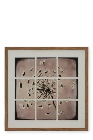 Buy Framed Layered Floral from the Next UK online shop