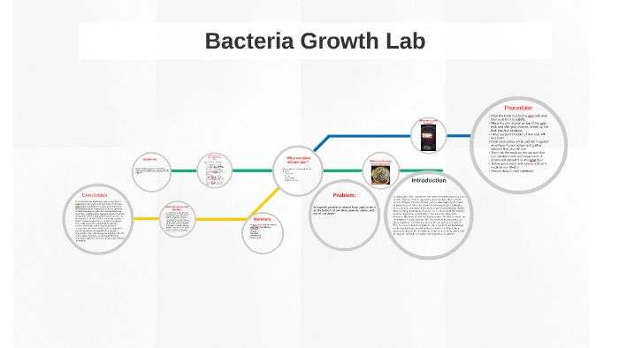 """bacterial growth lab Pure culture -a single """"strain"""" of microbe grown in isolation strain - a microbial  culture which is the descendent of a single cell originally isolated from the."""