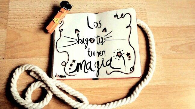 Bigotes <3 #Cats #Bigotes #HandDrawing #Ilustration #Draw #Typography #nbm #rayon
