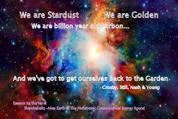 17 Best Ideas About We Are Golden On Pinterest Backyards Mika Singer And We Are Golden Lyrics