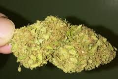 Buy Alien OG Kush Online Hybrid - 50% Sativa /50% Indica . It brings to you a unique combination that will tend to your problems in a very effective way. Buy Marijuana Online | Buy Weed | THC and CBD Oil. Medical, Cannabis, Weed, Oil, THC, CBD, Wax, Edibles, Concentrates... Sale. Contact us now: ww.chem-meds.com