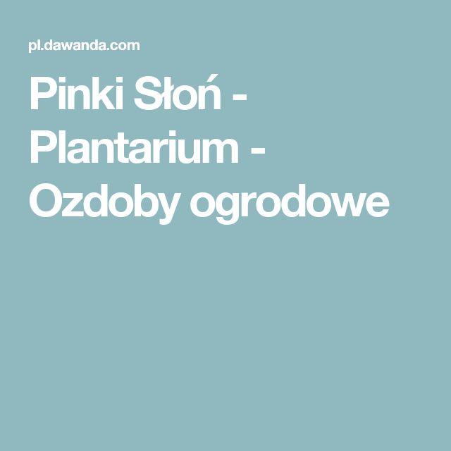 Pinki Słoń - Plantarium - Ozdoby ogrodowe