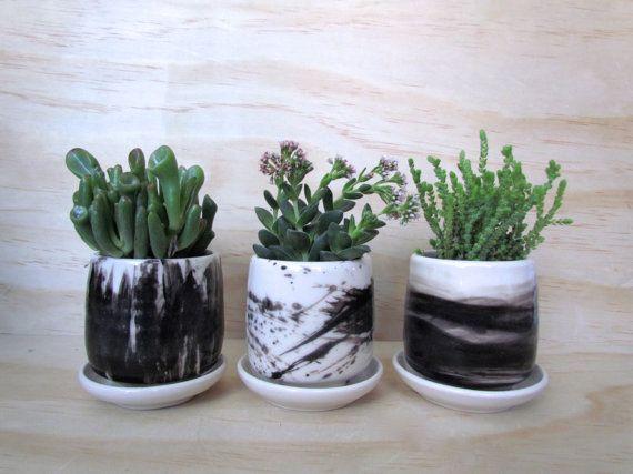 Set Of Three Small Black and White Brush by MelissaMayaPottery