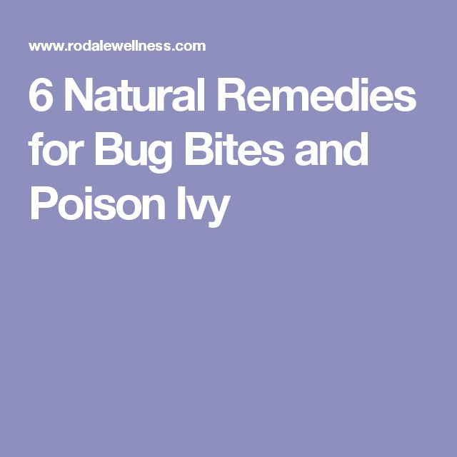 6 Natural Remedies for Bug Bites and Poison Ivy