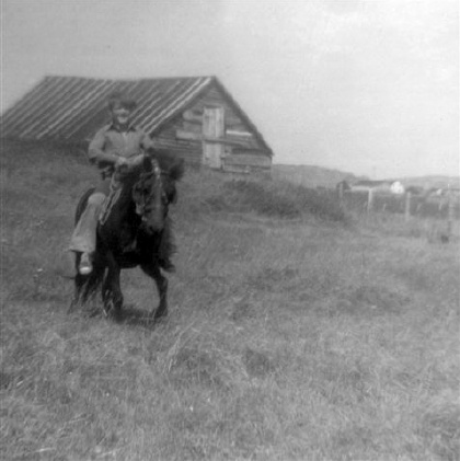 Kevin Dawson riding Babbs through the field. Aug. 1972. {Newfoundland Pony Society}