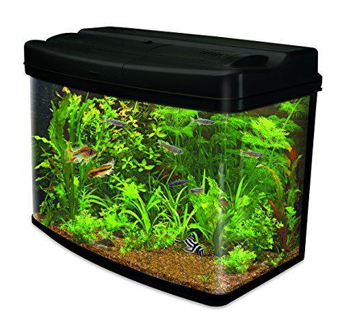 10905 best fish supplies images on pinterest fish for Fish aquarium supplies