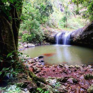 Exploring Lip Falls, Beechmont