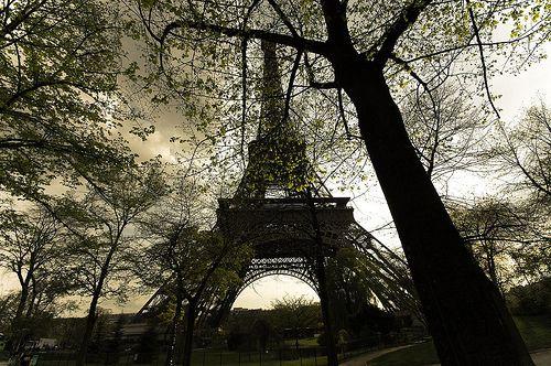 France / Paris - Tour Eiffel by Manu Foissotte