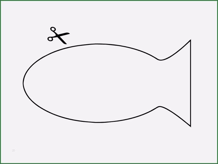 √ fisch vorlage fisch malvorlage  fischlexikon