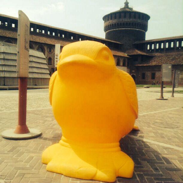 Pájaro posado en Plaza #ReciclajeVisual