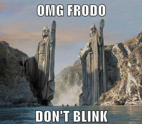 OMG Frodo, Don't Blink!  #DoctorWho #LOTR