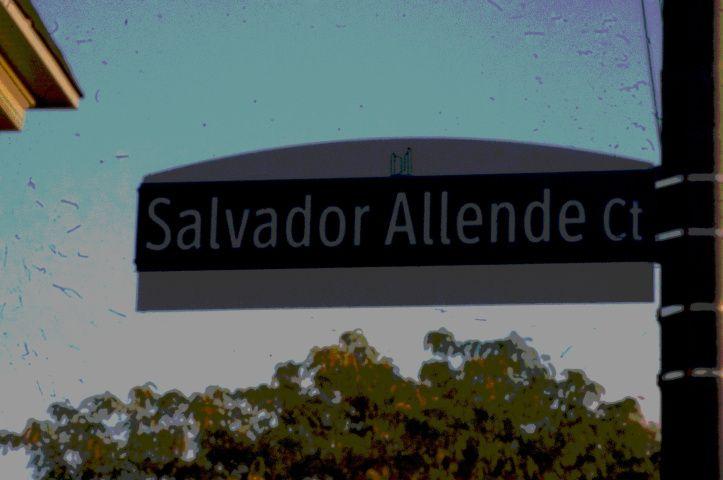 DSC05313 Allende