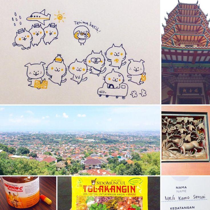 """좋아요 959개, 댓글 6개 - Instagram의 カモ(@illustratorkamo)님: """"#Indonesia#ZEBRAIndonesia#semarang#terimakasih#ありがとうございます#UDINUS スマランでイラストワークショップです)^o^("""""""