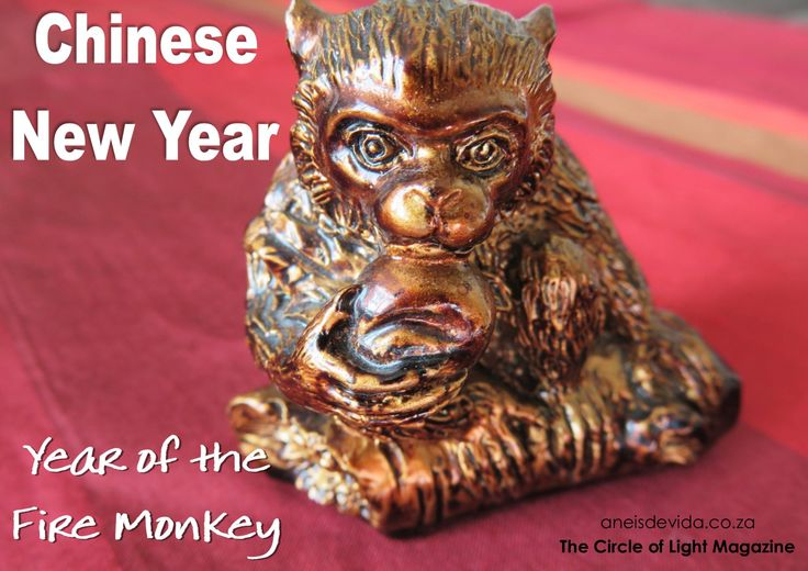 Happy Chinese New Year. The 9th zodiac sign and 2016 is a Fire Monkey Year. http://aneisdevida.co.za