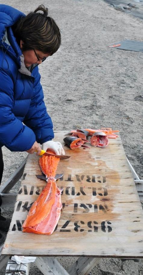 nunavut arctic char