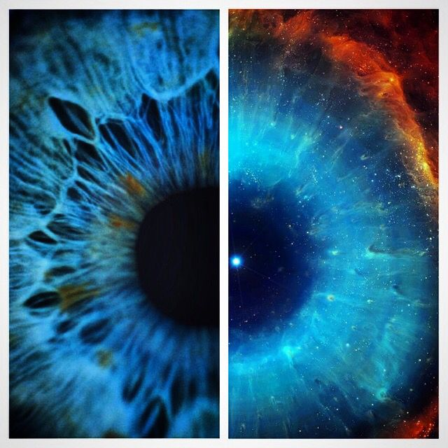 the human eye in space Nasa medical officials have noted vision changes in some space station astronauts, though nothing serious enough yet to ground any spaceflyers they' re not sure if intracranial hypertension is to blame, researchers said, but they're looking into it nasa has placed this problem high on its list of human.