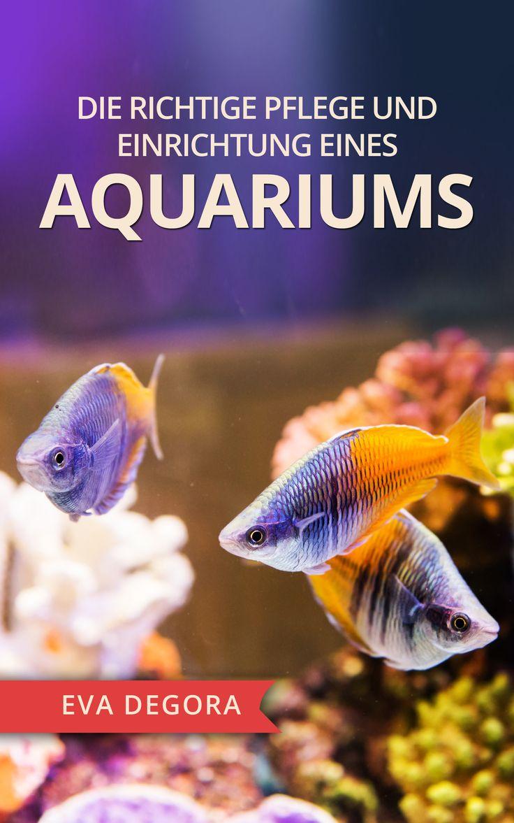 Gibt`s HIER http://amzn.to/2gBw3DE Die richtige Pflege und Einrichtung eines Aquariums