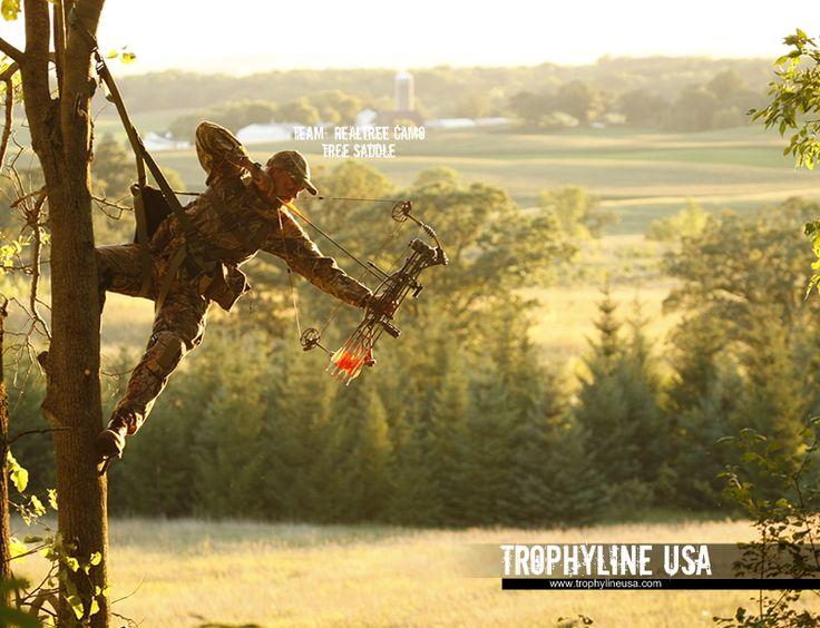 Tree Saddle Deer Hunting