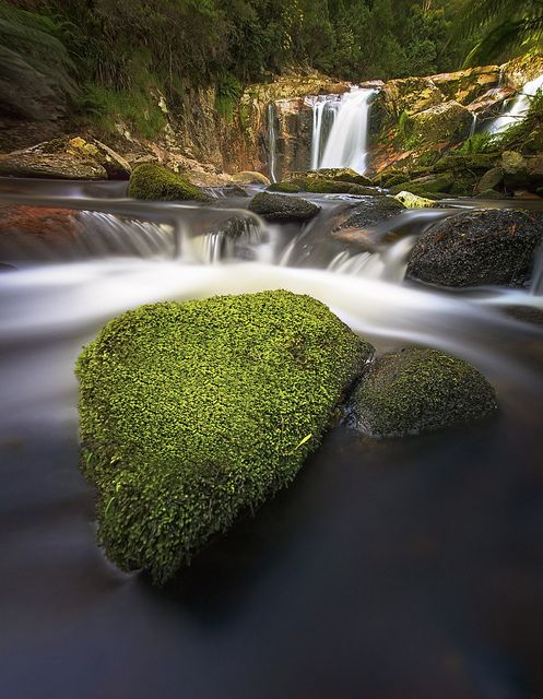 Hall Fall, Tasmania