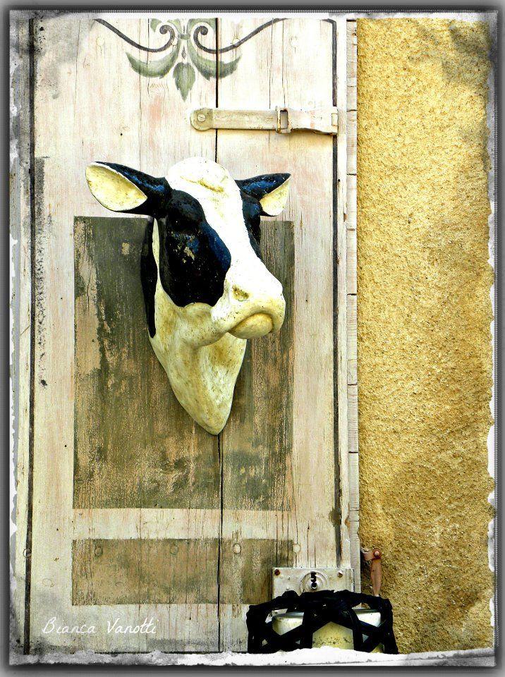 porta con testa di mucca