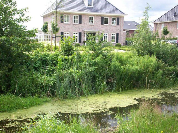 Logeren in Assen bij Room 17. Op zoek naar een sfeervol logeeradres in het prachtige Drenthe? Kamer: 60m2 met aparte badkamer