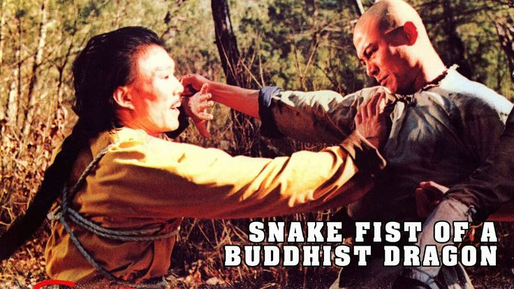 """Watch """"Wu Tang Collection - Snake Fist of a Buddhist Dragon"""" on YouTube https://www.youtube.com/watch?v=KTS8Ur3qK6E&feature=youtu.be&utm_content=buffer9979b&utm_medium=social&utm_source=pinterest.com&utm_campaign=buffer"""