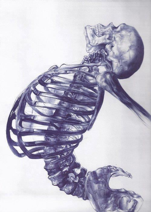 Ballpoint pen skeleton drawing, could be real cool. Not a whole lot of people opt for that media.