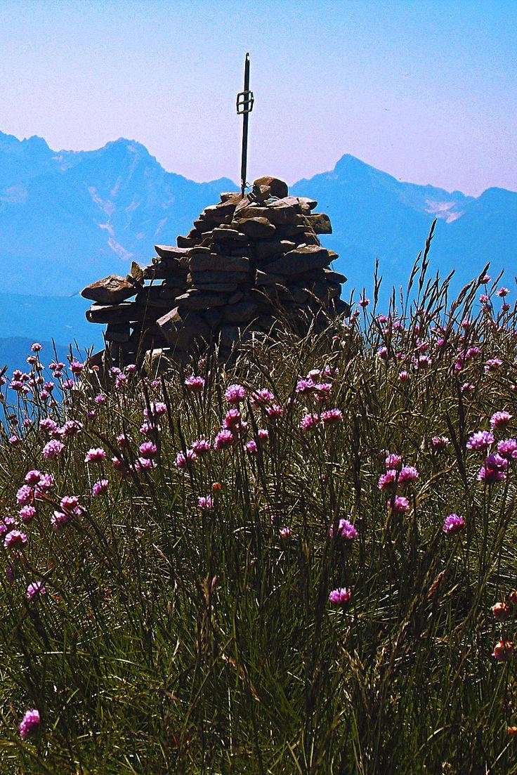 High Val Parma Forest  -  The Lagoni On  Mount Sillara summit