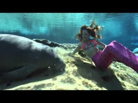 Weeki wachee mermaids coupons