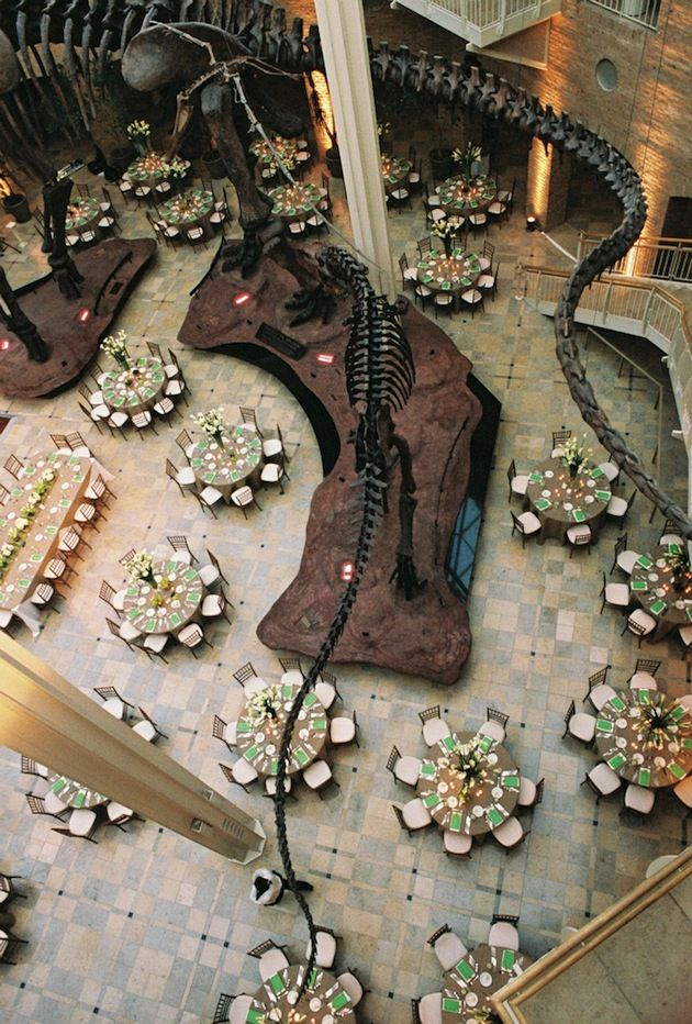 Art and history museums, as well as aquariums, are all excellent options for unique and memorable weddings.