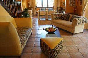 Make yourself comfortable on...the Tiger couch!  Today's Favourite Hotel is Olaf's Guest House in Cape Town, South Africa! Suggested by many Friends in the ToucHotel Community