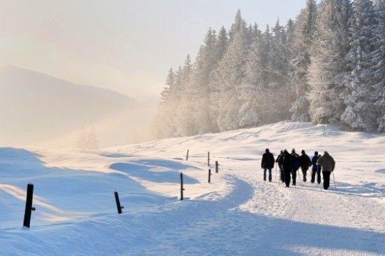 Beleef een dag échte wintersport en ga naar #Winterberg. #Skiën, #boarden, #langlaufen, #sleeën of gewoon een heerlijk lange #winterwandeling in de sprookjesachtig witte heuvels.