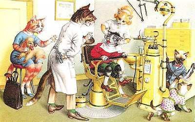 Eugen Hartung Artist Signed Mainzer Dressed Cats Dentist Office Vintage Postcard