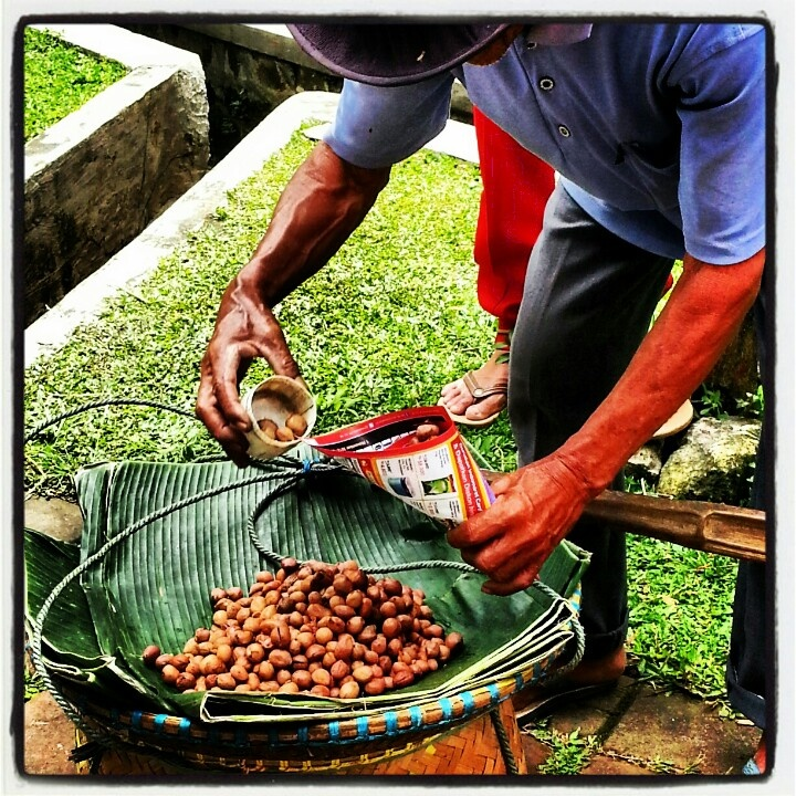 Kacang Bandung