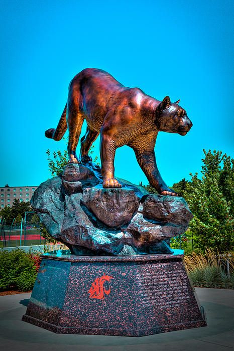 Cougar Pride Sculpture - Washington State University