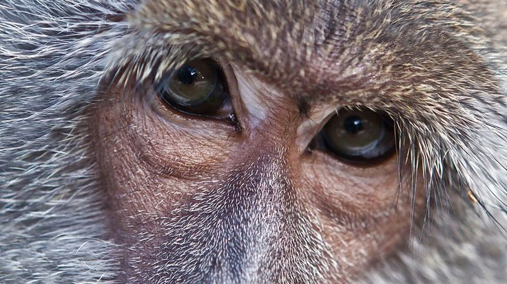Wildlife Rescue Centre - KILROY