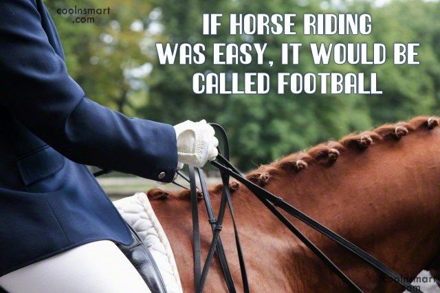 horse sayings funny - Google Search