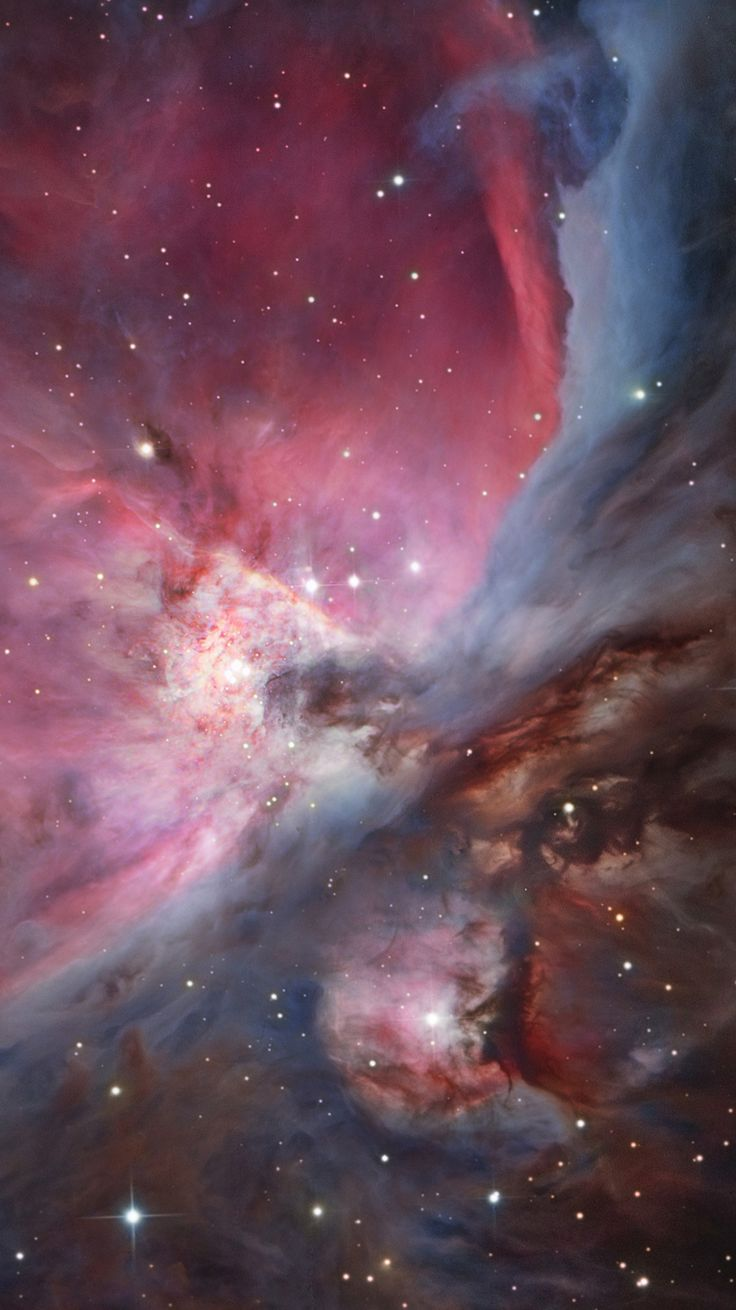 Dense core of the Orion Nebula ~ About three million years old, the Orion Nebula was even more compact in its younger years and runaway stellar collisions long ago formed a black hole with more than 100 times the mass of the Sun. The Orion Nebula's distance of some 1,500 light-years would make it the closest known black hole to planet Earth.