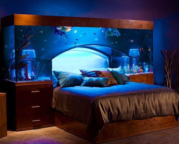 Mon mari adore l'aquariophilie. Je partage un peu sa passion et c'est peut être bien le genre de lit que nous aurons plus tard! très original et apaisant je trouve.