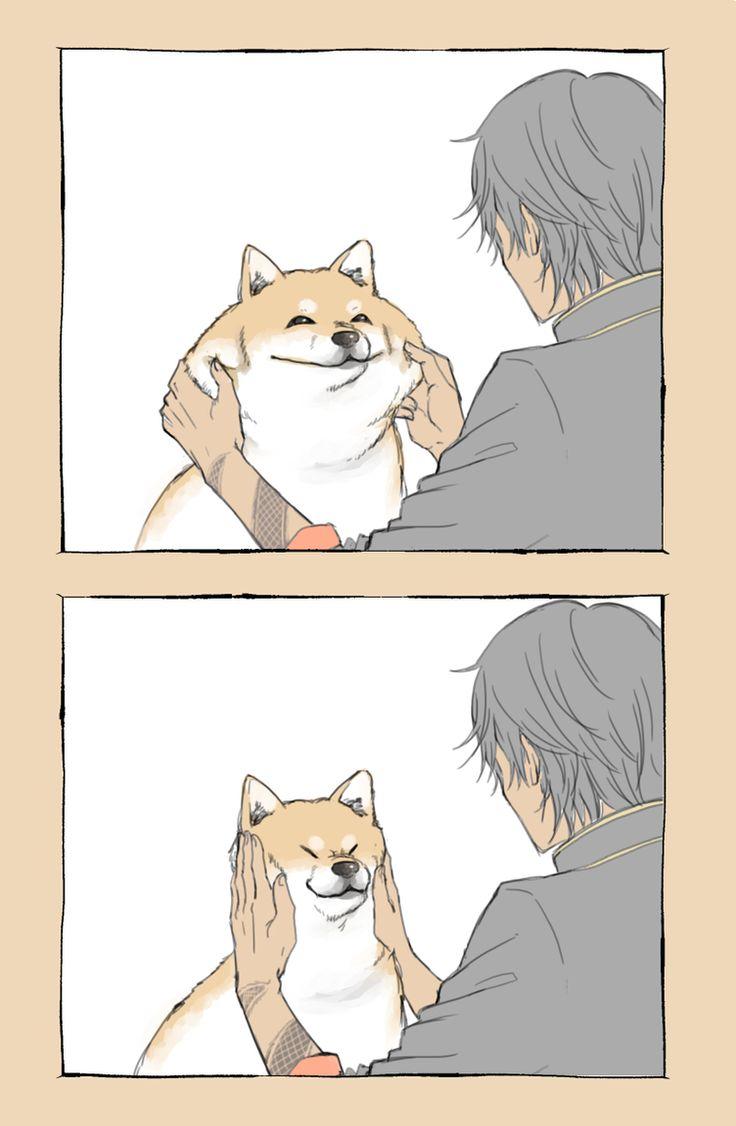 加羅ちゃんと油揚げ(犬)