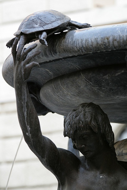 Fontana delle Tartarughe in Piazza Mattei, Rome