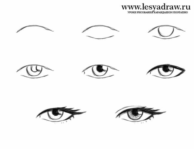 Auge zeichnen für Anfänger   Augen zeichnen, Zeichnen für ...