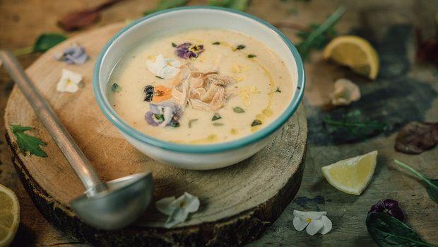Krémová kuřecí polévka Foto: