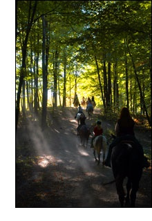 Niagara Riding Stables :: Horseback Trail Rides Along The Niagara Escarpment