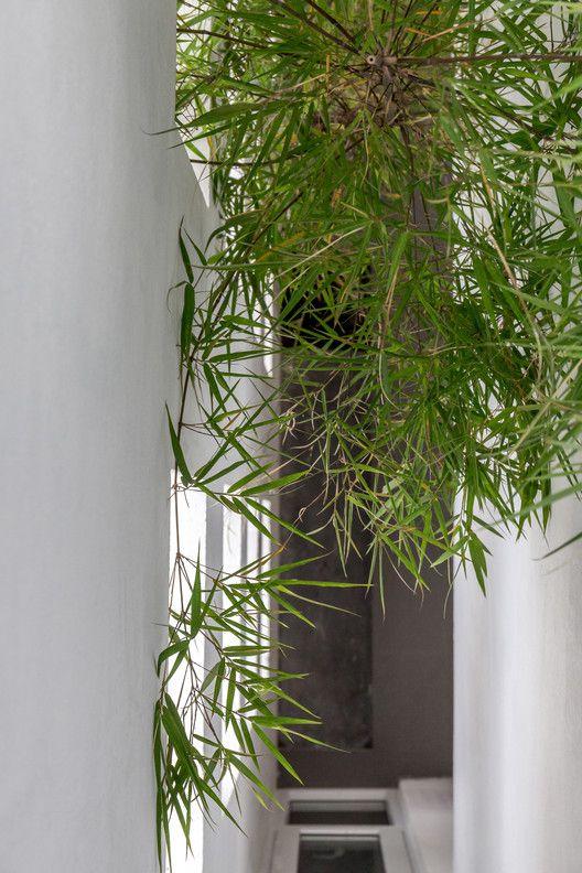 The Cul-de-sac House,© Hoang Le