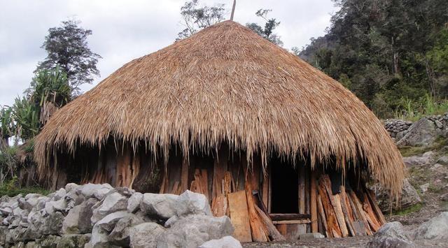 Honai, Rumah Adat Suku Dani di Papua