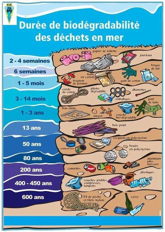 Ecologie: durée de biodégradabilité des déchets en mer