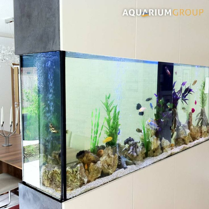 25 best ideas about fish tank table on pinterest fish for Fish tank dining room table